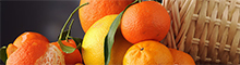 Hương cam quýt